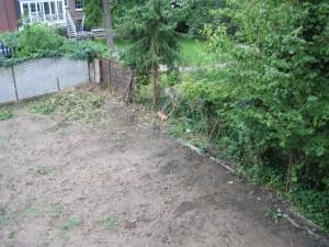 Garten heute morgen